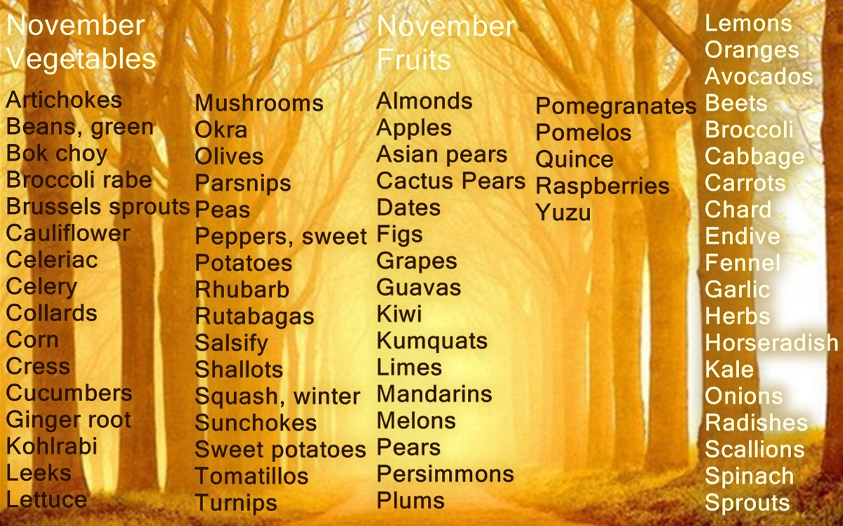 November Seasonal Vegetables And Fruits Explortation